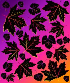 Free Background With Autumnal Leaves. Royalty Free Stock Image - 16494506
