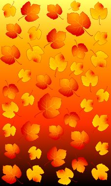 Free Background With Autumnal Leaves. Royalty Free Stock Images - 16494509