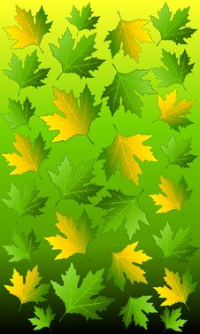 Free Background With Autumnal Leaves. Royalty Free Stock Photo - 16494585