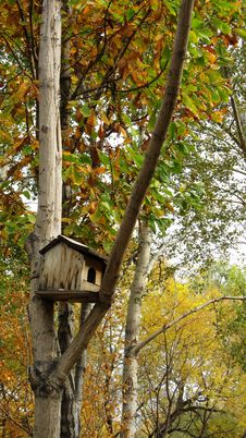 Free Squirrel House Stock Images - 16494894