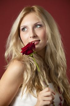 Free Blond Beauty Royalty Free Stock Photography - 16495967