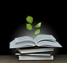Free Tree Growing From Book Stock Photos - 16496923