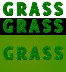 Free 3 Grass Royalty Free Stock Image - 16497426
