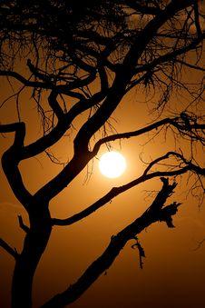 Free Masai Stock Photos - 16497623