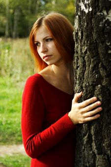 Free Girl In Red Dress Snuggle Up To Tree Stock Images - 16498754