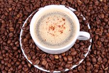 Free Cup Of Coffee Royalty Free Stock Photography - 16498837