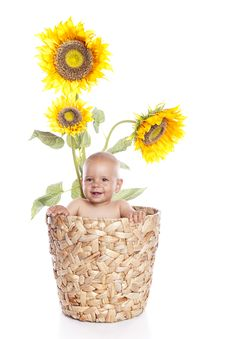 Free Baby Boy With Flowers On White Stock Images - 16499334