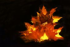 Free Autumnal Fire Stock Photos - 1652403