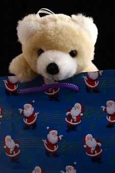 Free Bear In Christmas Bag Stock Photos - 1653413