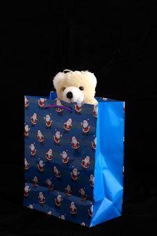 Free Bear In Christmas Bag Royalty Free Stock Photos - 1653508