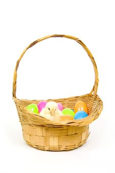 Free Baby Chick In A Basket With Plastic Easter Eggs Stock Photo - 1653790