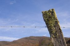 Free Barbed Wire Fence And Blue Sky Stock Image - 1653831