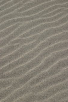 Free Sand Ripples Stock Images - 1655054