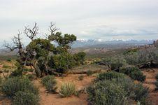 Free Varied Utah Landscape Stock Photography - 1655412