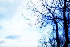 Free Rain Stock Photography - 1655762