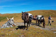 Free Horses, Mountains And Men. Royalty Free Stock Photos - 1656148