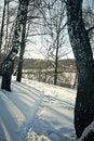 Free Snow Path Stock Photography - 16500342