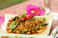 Free Fried Pork With Holy Basil Stock Photos - 16507173