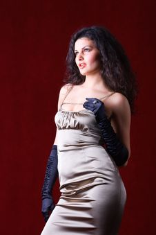 Free Fashion Model Wearing Satin Gloves Stock Images - 16500054