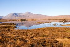 Free Rannoch Moor Royalty Free Stock Photo - 16500485