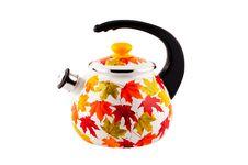 Free Teapot Isolated On White. Stock Photo - 16500820