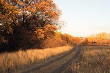 Free Autumn Stock Photo - 16504950