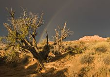 Free Rainbow Over Arches National Park Stock Images - 16505674