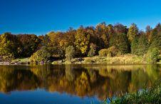 Free Autumn Wood Reflection Stock Photo - 16505980