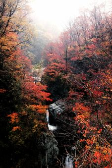 Free Autumn Waterfall Royalty Free Stock Image - 16508356
