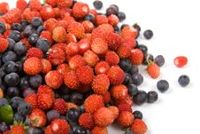 Free Wild Strawberries And Blueberries Stock Photos - 16508603