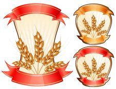 Free Vector Ears Of Wheat. Stock Photo - 16509430
