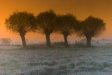 Free Sunrise Stock Photos - 16509843