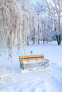 Free Bench In Winter Park Royalty Free Stock Photo - 16513915