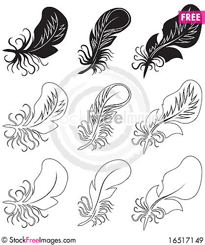 Free Fluff And Feathers. Royalty Free Stock Images - 16517149