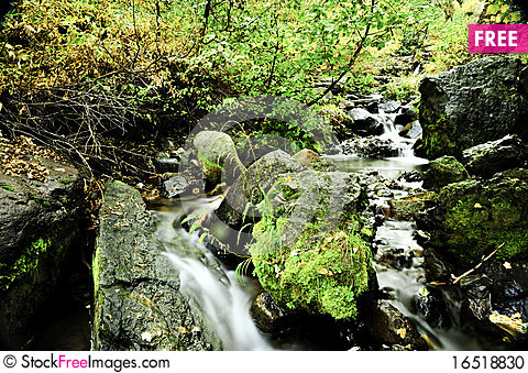 Free Slow Moving Creek Stock Photo - 16518830