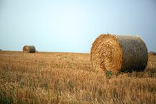 Free Stacks Of Straw Stock Photo - 16510340