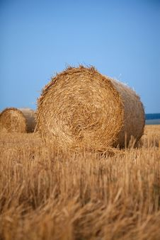 Free Stack Of Hay Stock Photo - 16510490