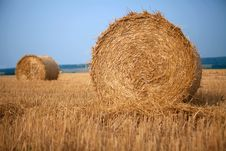 Free Stack Of Hay Royalty Free Stock Images - 16510519