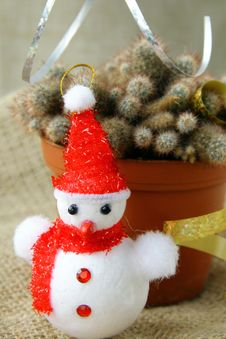 Free Cactus Decorated With Christmas Toys Royalty Free Stock Images - 16511059