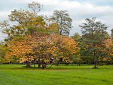 Free Autumn In London Park Stock Images - 16512014