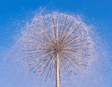 Free Fountain As Dandelion With A Blue Sky Royalty Free Stock Photos - 16512328