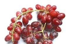 Free Bunch Of Red Grapes Royalty Free Stock Photography - 16513387