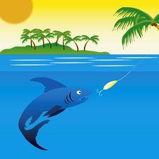 Free Big Fish Pecks On Spoon Bait Stock Photo - 16513640