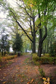 Free Cemetery In Autumn Stock Photos - 16514443