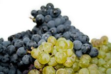 Free Grape Royalty Free Stock Images - 16515049