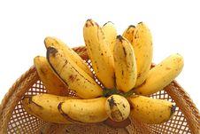 Hand Of Bananas, Tropical Thai Fruit Stock Photo