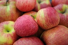 Free Closeup Apples Stock Image - 16515471