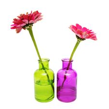 Free Flower In A Bottle Stock Photos - 16518383