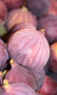 Free Ripe Fig Royalty Free Stock Images - 16519159