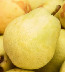 Pear Close Up Stock Image
